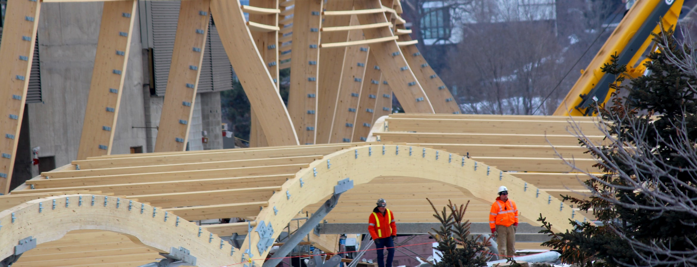 Mass Timber Connections: Aesthetics vs. Practicality